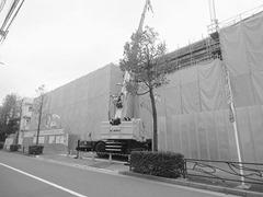 下小田中小学校の体育館改築・大規模増築